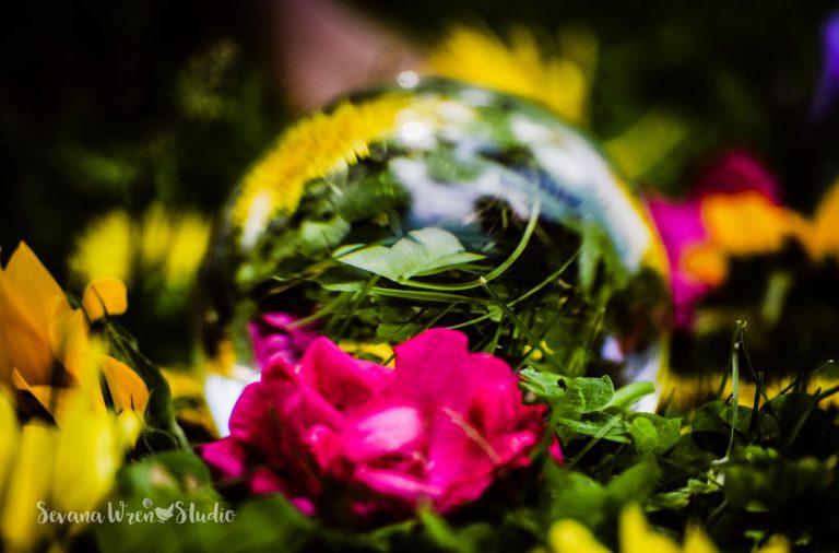 Circle_May_17