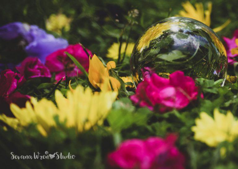 Circle_May_18